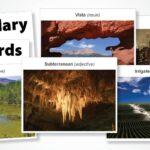 Access Visual Flashcards