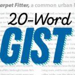 Write Strong 20-Word Summaries