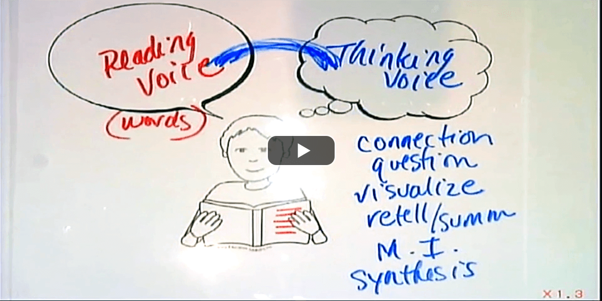 Introduce Reading Voice and Thinking Voice