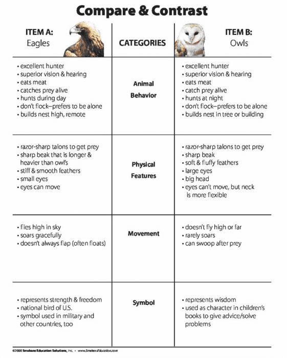 Compare & Contrast: Eagles v. Owls