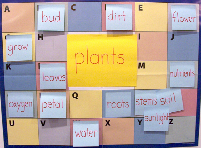 ABC Chart - PLANTS - Filled Out