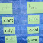 Teach Spelling Principles Not Spelling Words