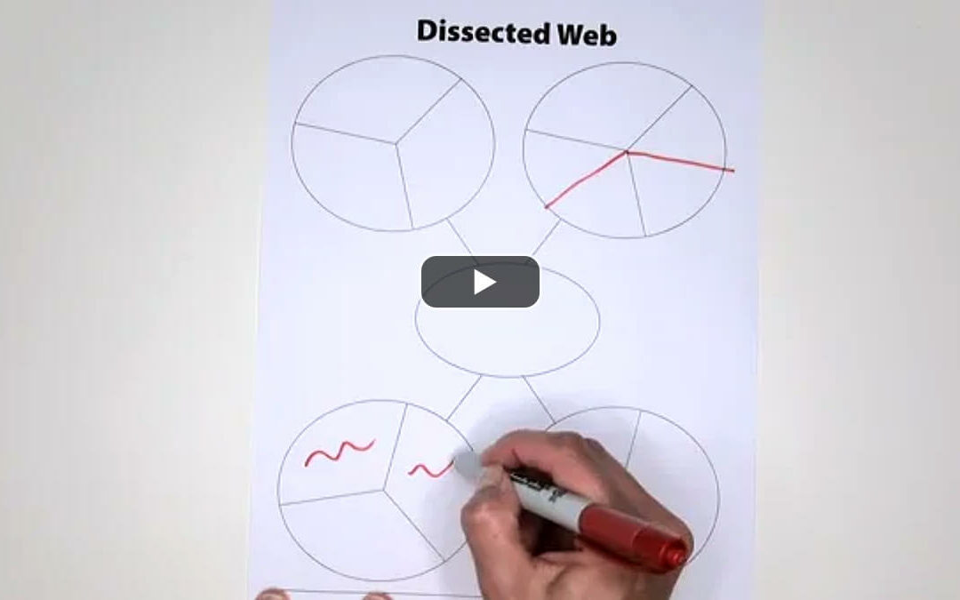 Track Main Ideas and Details within a Dissected Web