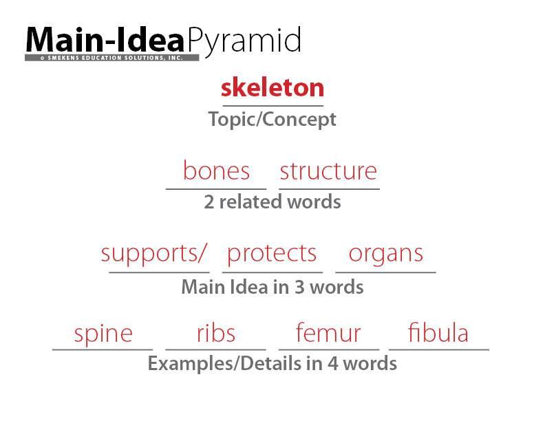 Main-Idea Information Pyramid Student Sample: Skeleton