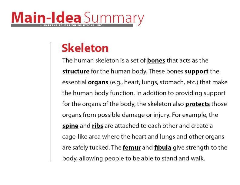 Sophisticated Summary Example: Skeleton
