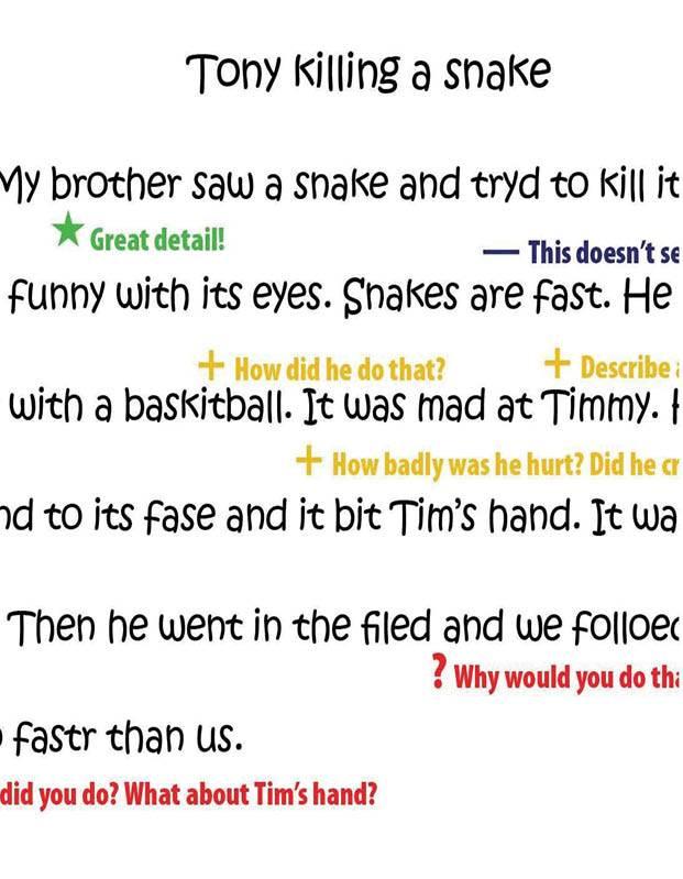 Grade 1 Student Sample - Tony Killing a Snake