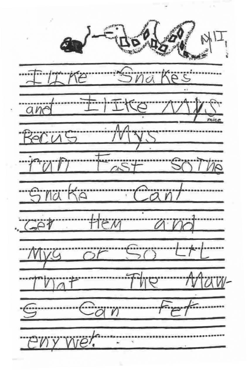 """Anchor Paper: Kindergarten Student Sample - """"I Like Snakes"""""""