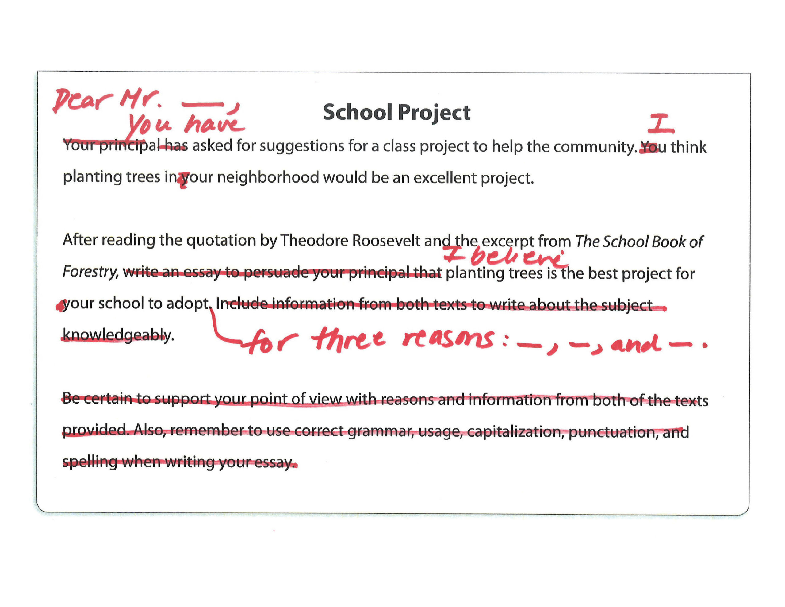 Prompt - School Project Example - Downloadable Resource