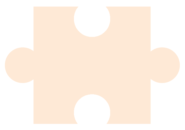 Light Orange Puzzle Piece - for Piecing Together Informative Introductions