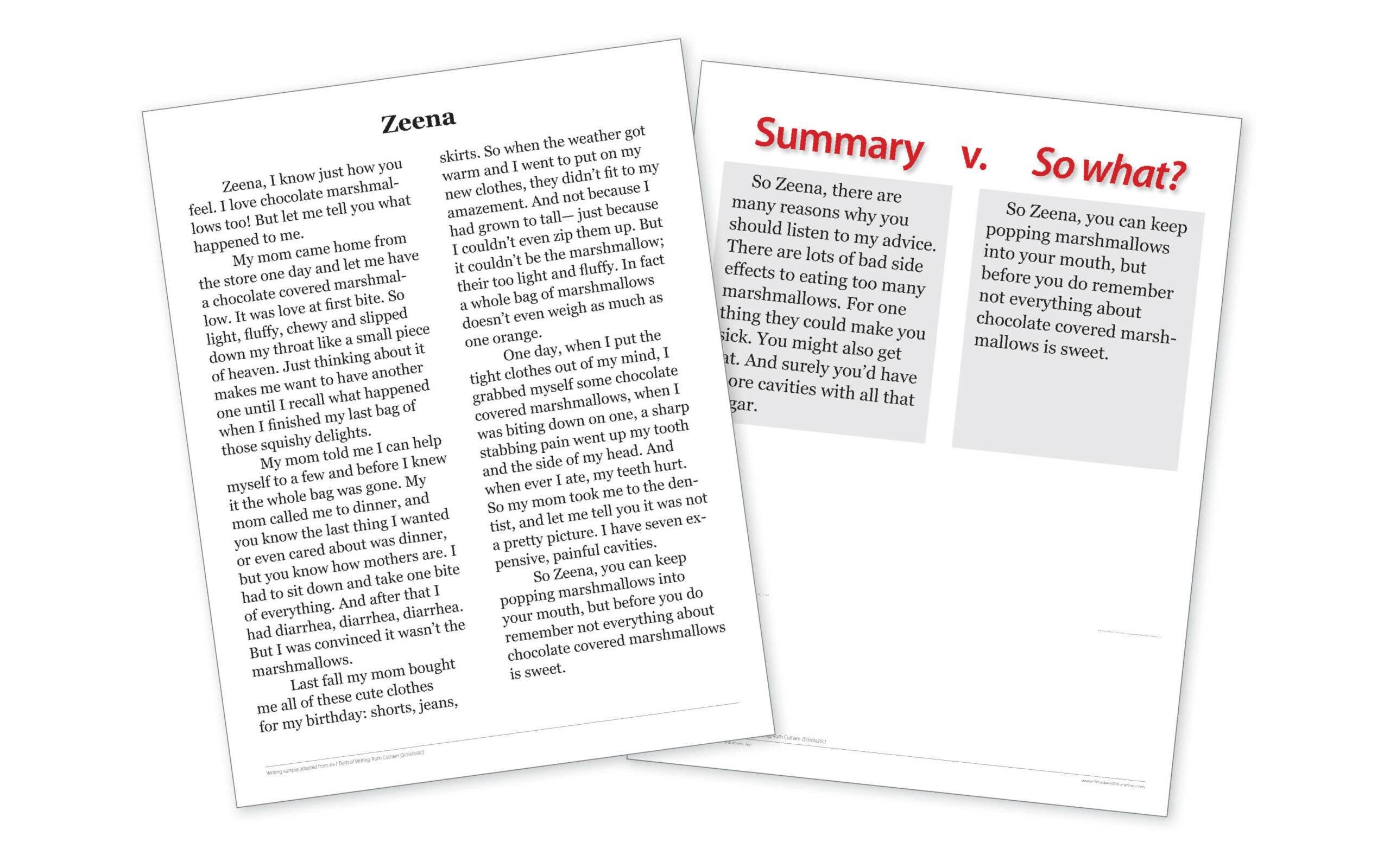 Write So What? Endings like Zeena - Downloadable Resource