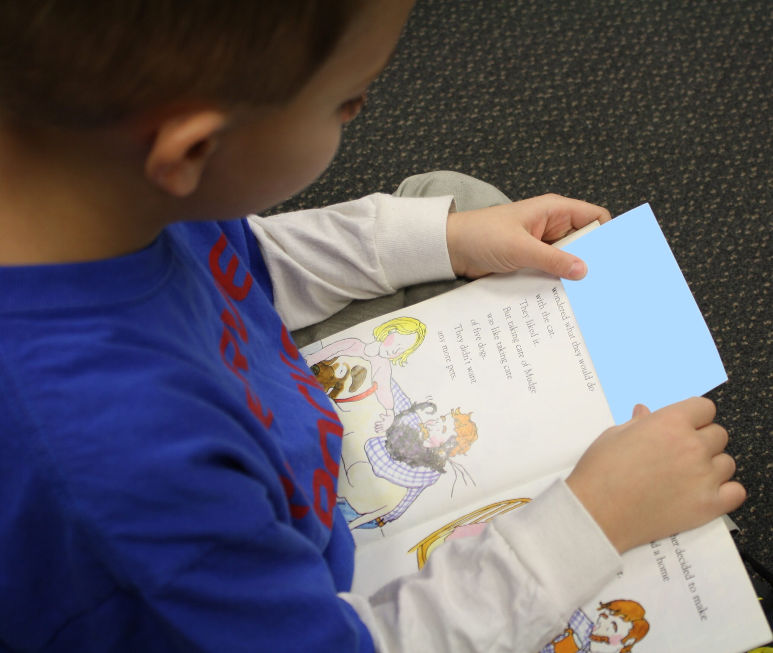 Fluency Bookmark for Tracking