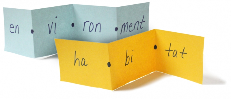 Foldable for Syllables
